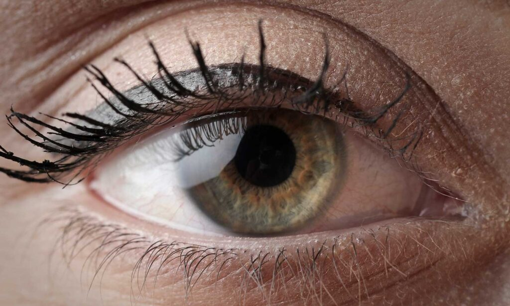 eye catching picture of a beautiful green eye